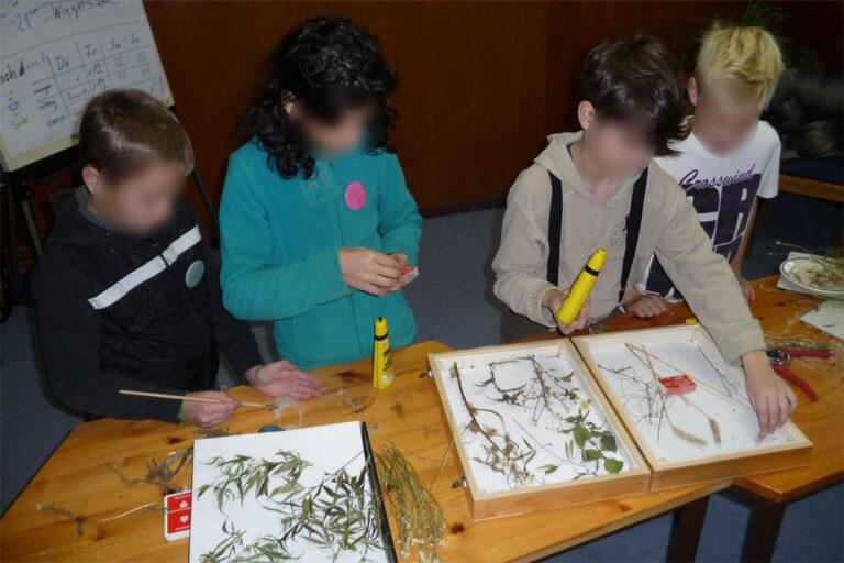 Agrarökologischer Bildungskoffer (3)